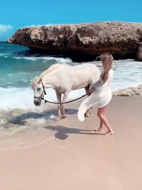 马:尝一下海水的味道