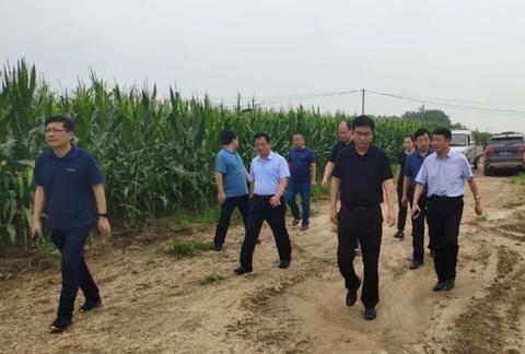 河南辉县:只要群众安全,晒黑又如何!
