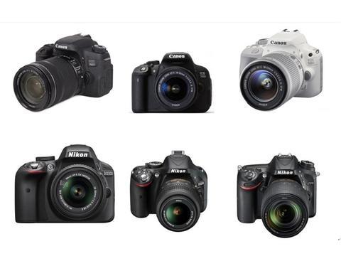 有哪些入门级单反相机比较好