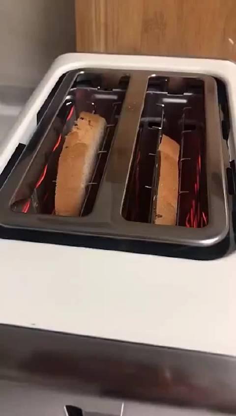 今天也是被面包机吓到的一天