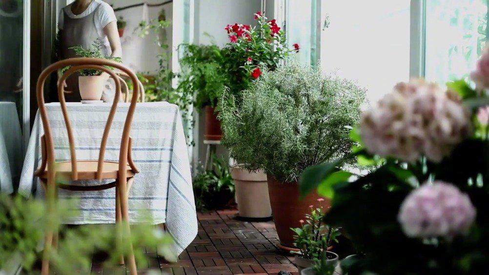 夏日如何装饰阳台庭院? 绘制阳台的布置草图,制作花盆挂架……