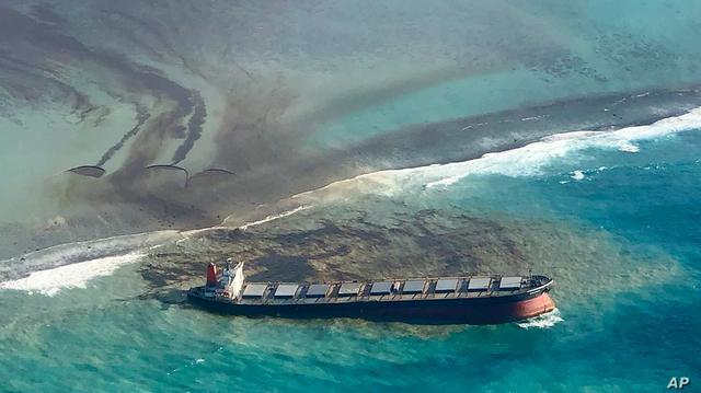 环保倒退20年!日本货船持续漏油,毛里求斯海洋生物开始死亡
