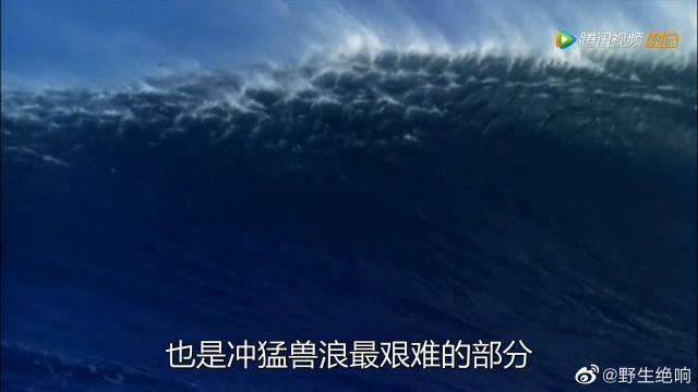 """恐怖一幕!冲浪高手挑战""""猛兽浪"""" 被卷入巨浪翻滚数圈消失"""