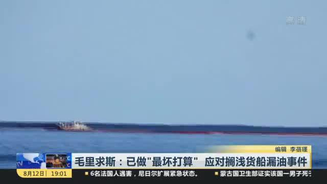 """毛里求斯:已做""""最坏打算""""  应对搁浅货船漏油事件"""