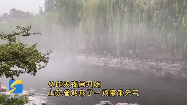 山东 未来三天雨水频繁打卡 济南黑虎泉云雾缭绕犹如仙境