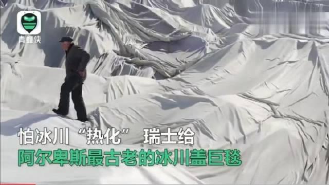 为防冰川融化,瑞士每年给它们盖上毛毯,人类智慧