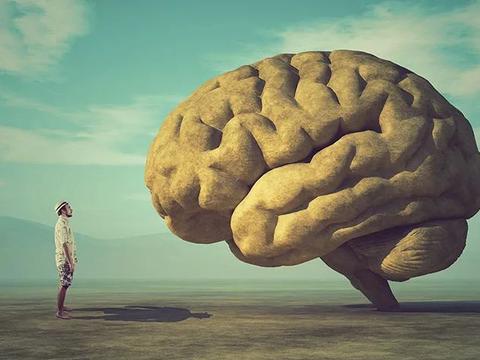 迷你器官的大作用:微型实验室人脑揭示新冠影响