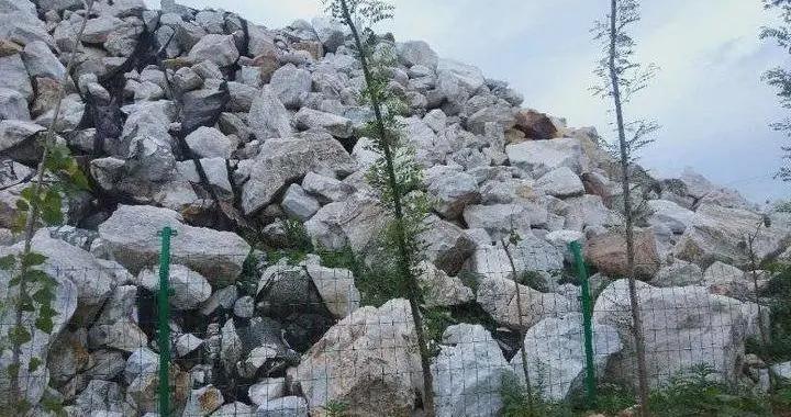 平度一石粉厂非法占地经营 执法部门:罚款限期退还耕地