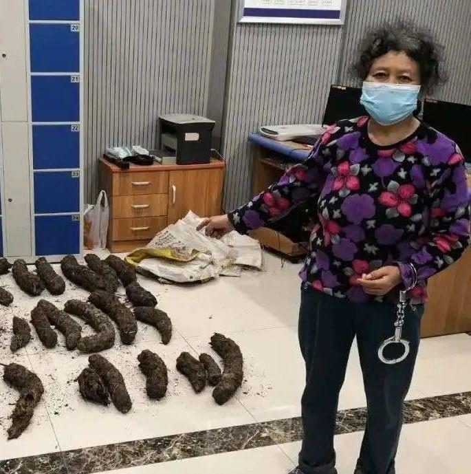 """保护区内上百株""""活化石""""遭盗伐,还被1元一斤转手卖了"""