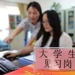 沧州市卫生健康委员会、市委网信提供就业见习岗位