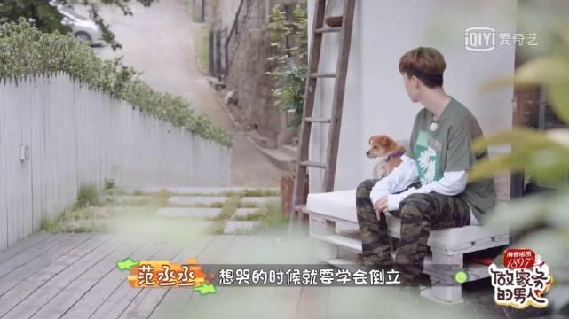 """笑死!范丞丞对着狗说""""咱俩就跟偶像剧一样"""",狗都懵了 好多狗都没你帅呢,你搁那消愁啥呢"""