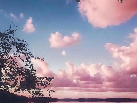 超唯美的星空句子,如夜空般温柔