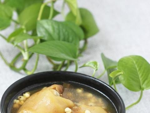 猪蹄煲汤,用前脚还是后脚,要学会区分两种猪蹄,口感上差别很大