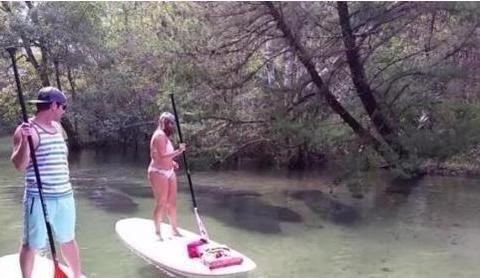 男子和女友水上划船, 忽然水下掠过一片黑影, 男友说这是美人鱼!