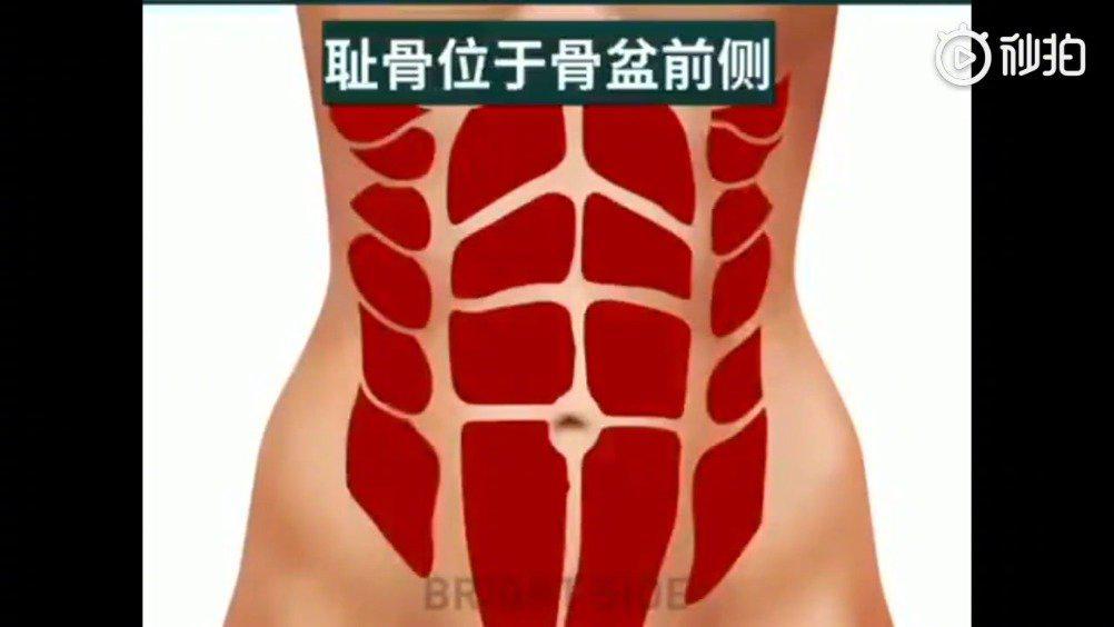这个好有用啊!几个非常简单的锻炼,经常做可以去除肚子肥肉……