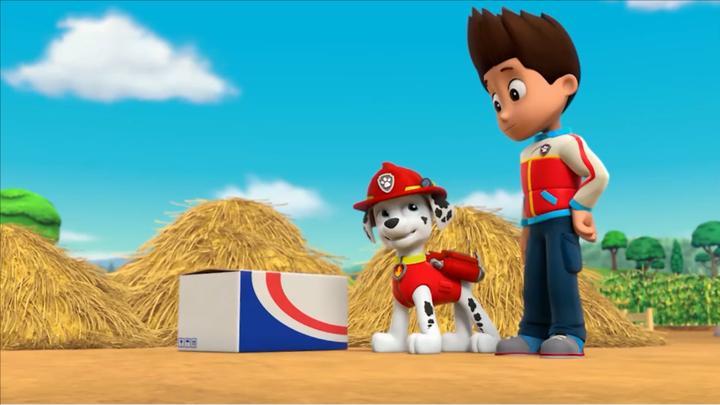 汪汪队:这里有个神秘箱子,没人打开它,还是由狗狗带回基地吧