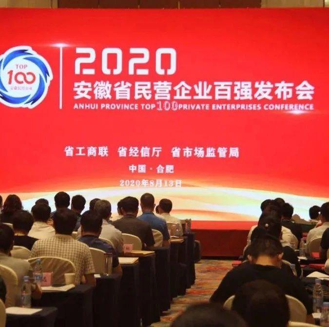 全省第二!芜湖13家企业跻身安徽民企营收百强榜
