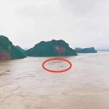 洪水中游泳,还有人喊加油?!网友:这是健身还是玩命?