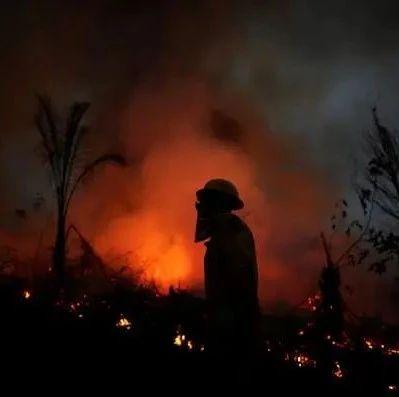 亚马孙雨林正在燃烧,巴西总统辩称:是谎言!