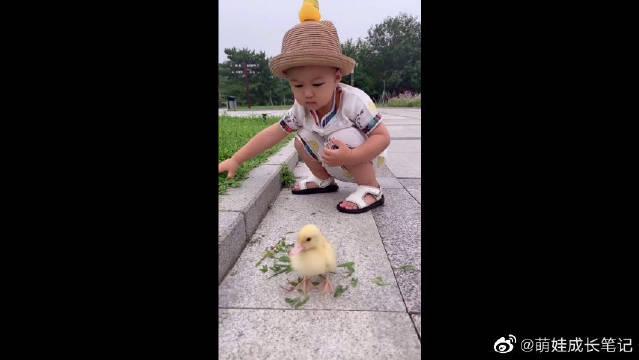 小朋友的世界好奇妙,和鸭子也能赛跑!