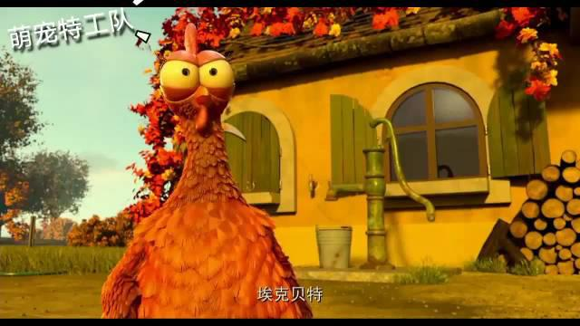 母鸡们投票唯一一只公鸡炖鸡汤,最后成功实现获得新公鸡的愿望
