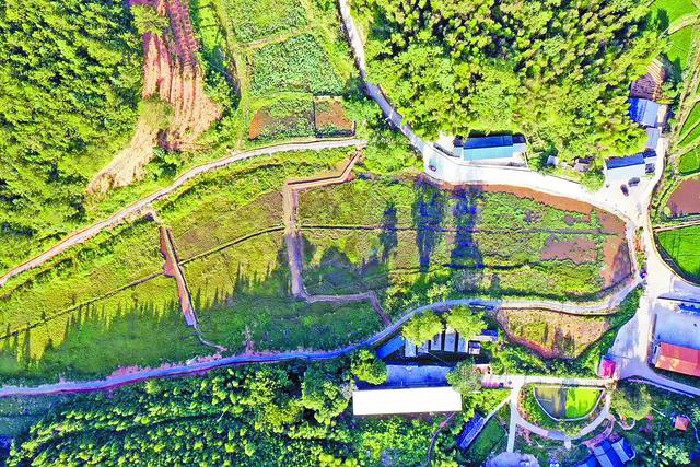 聚力体育频道直播:福建第一个小型微型湿地公园在明溪建成