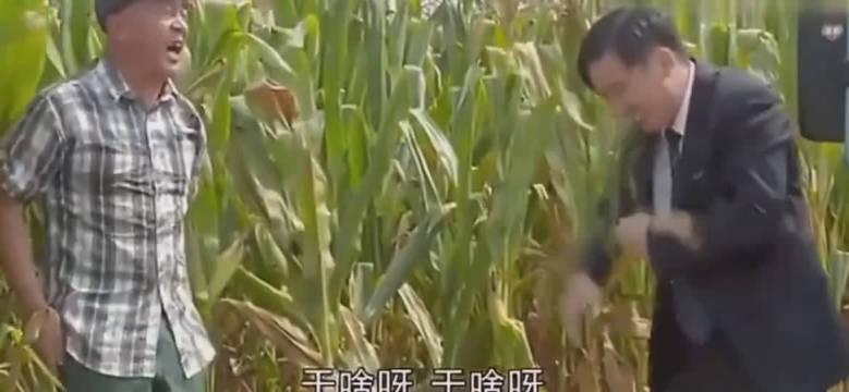 大花裤,解放鞋,尼古拉斯赵四爷!!