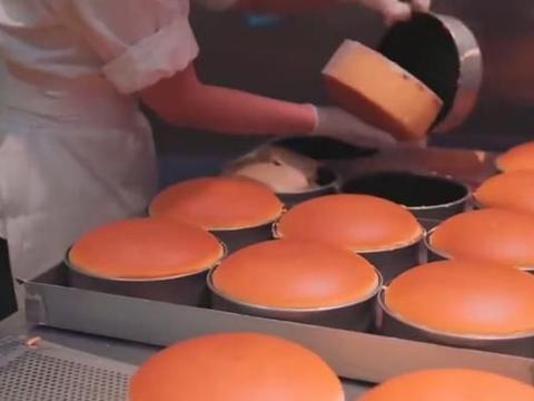 小店芝士蛋糕太抢手!软弹细腻满满芝士香味,每天一出锅就被买完