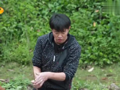圆白菜里发现虫子,黄磊跟王太利抢着吃,何炅:你们是什么人?