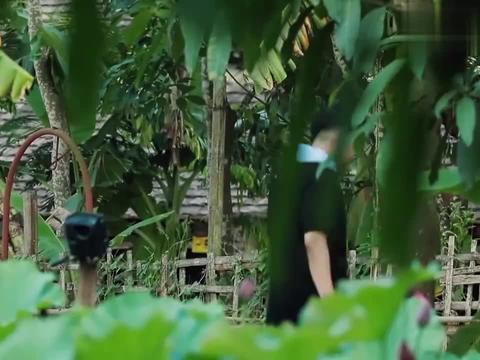 吴昕海涛在蘑菇屋闹翻天,看到他们下地干活,黄磊:终于清静了!