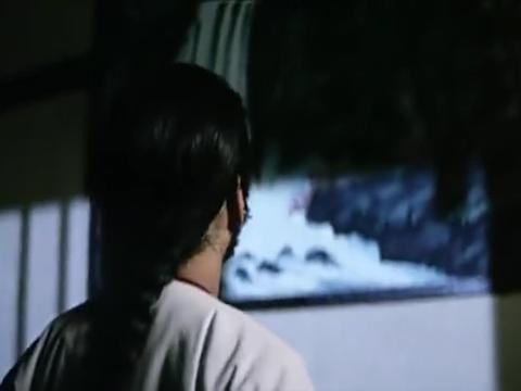 树根误入奇门遁甲院内,被两人的法术吓坏,网友:笑哭