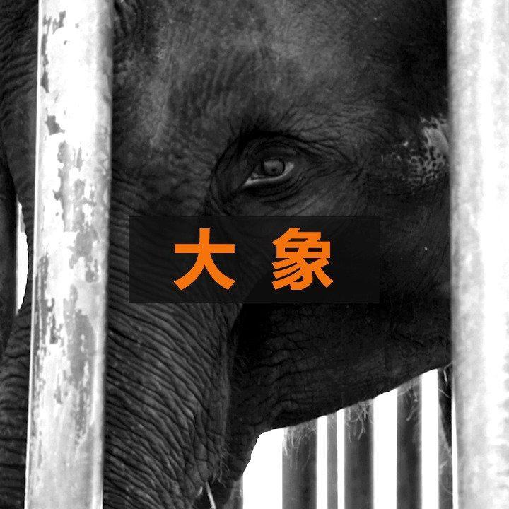 野生动物贸易下的旅游娱乐业