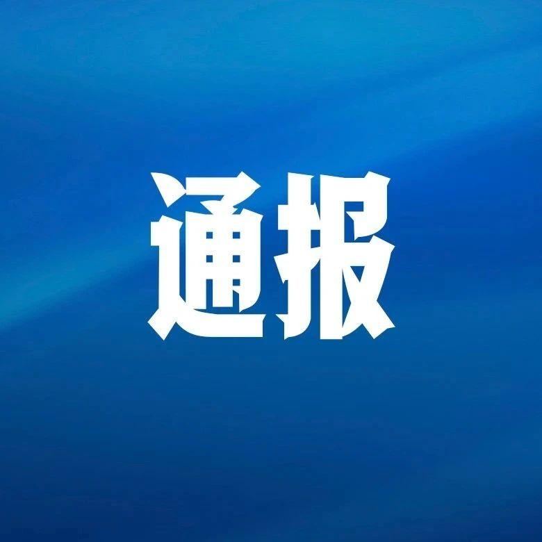 中共青岛市纪委关于4起不作为乱作为等形式主义官僚主义典型问题的通报