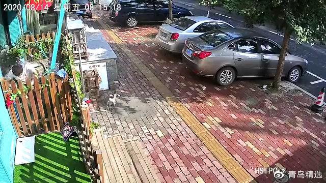 青岛一小区阳台坍塌,业主摔蒙了!
