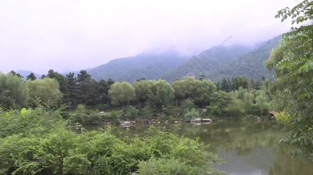 长安区:因地制宜加大植绿力度 进一步修复秦岭生态环境