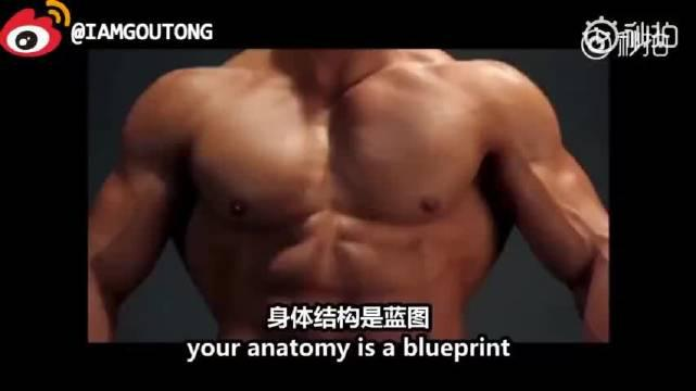 最纯洁,最细致的胸部肌肉解剖与训练干货。 在增肌的路上……