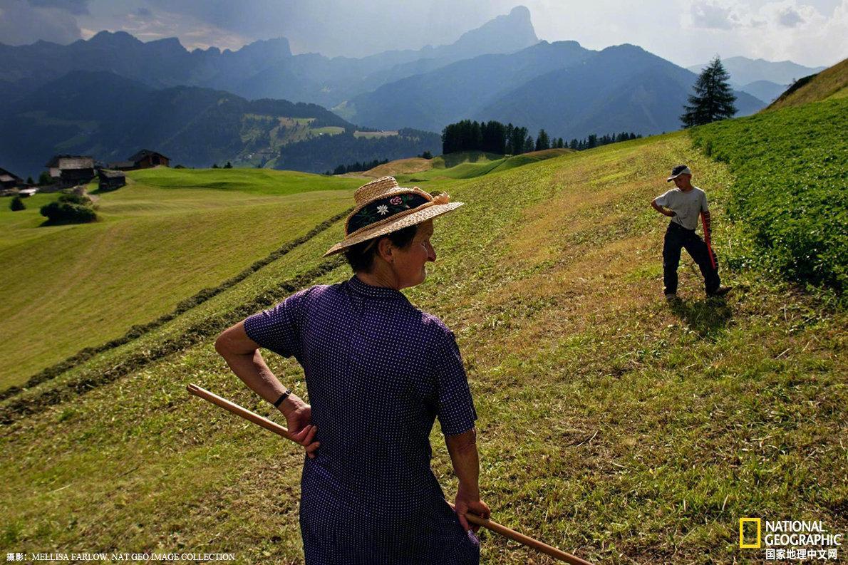意大利阿尔卑斯山山区,一名女子正在家族农场上劳作