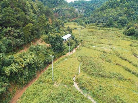 广西钟山:供电有保障 油茶更醇香(图)