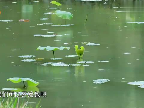 向往2:黄磊擀皮的速度太快,王迅根本跟不上,何炅:能慢点吗?