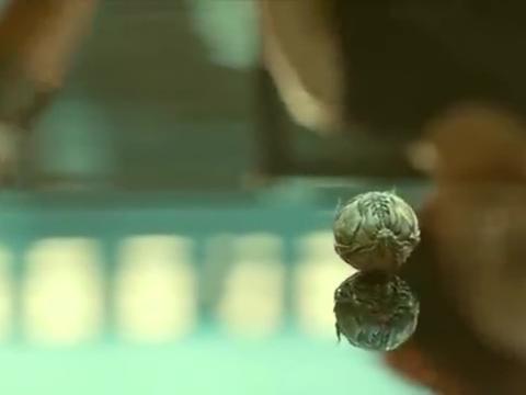 神奇的外星物体,把它扔水里,它的反映是你们没见过的