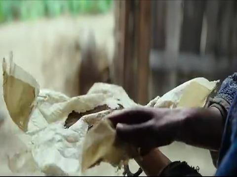 健忘村:舒淇想自杀,结果因为毒药太臭,做成美食都没吃下去