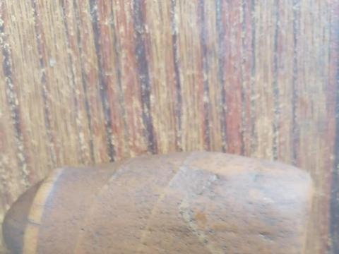 在黑龙江省伊春市嘉荫县,龙骨化石基地惊现象形石——生命之源