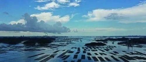 """广西大力发展""""向海经济"""" 以海为居 乘风破浪   中国妇女报"""