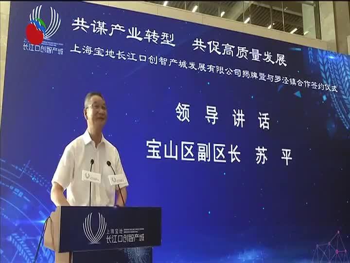 上海宝地长江口创智产城发展有限公司揭牌暨与罗泾镇合作签约仪式举行