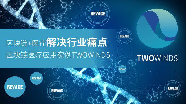 区块链+医疗解决行业痛点,TWO WINDS分享区块链医疗应用实例