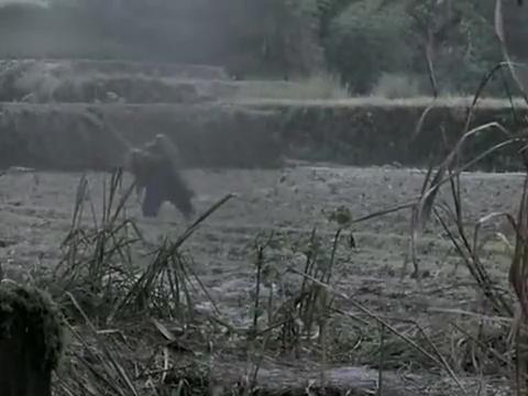 许多年后,姜武带着妻子和孩子回到苦竹村拜祭胡军,安详的去世了