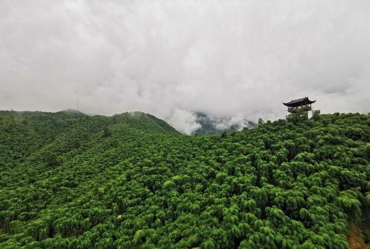 中国最大的竹海风景区 位于著名的竹乡