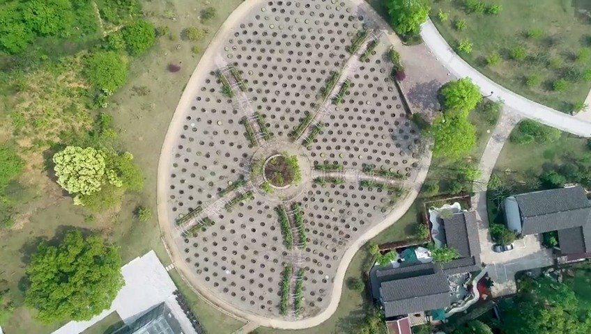 杭州植物园:遇见自然遇见美