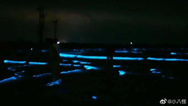 福建蓝眼泪海滩,平潭蓝眼泪海滩简直像不像是地球的景色……