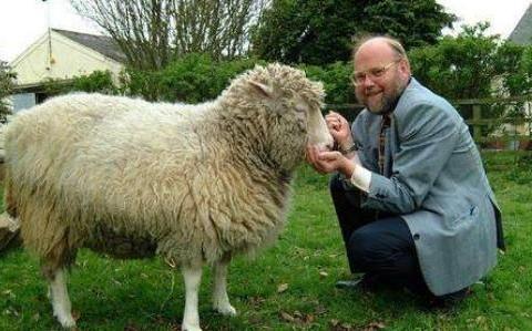 """当年世界上第一只""""克隆羊"""",后来结果怎样了?结局令人无法接受"""